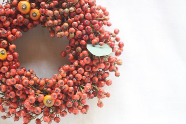 リース(生花)野ばらの実の赤いリース