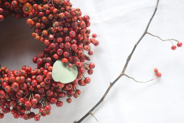 リース(生花)野ばらの実の赤いリース2