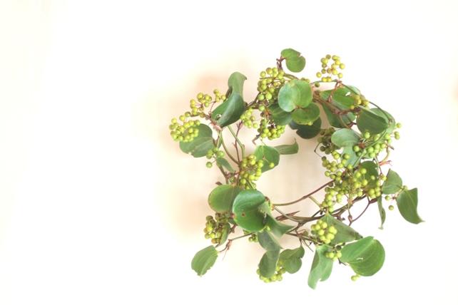 リース(生花)グリーンのサンキライのナチュラルリース