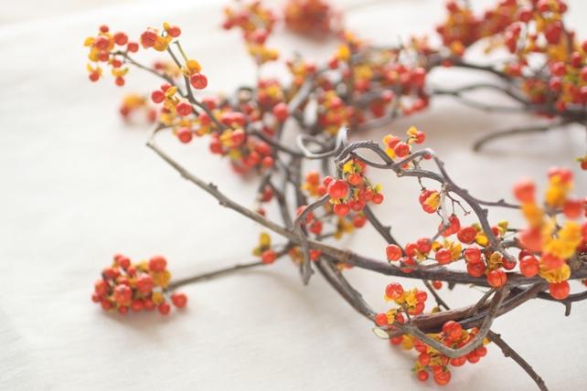 リース(生花)ツルウメモドキのナチュラルリース2